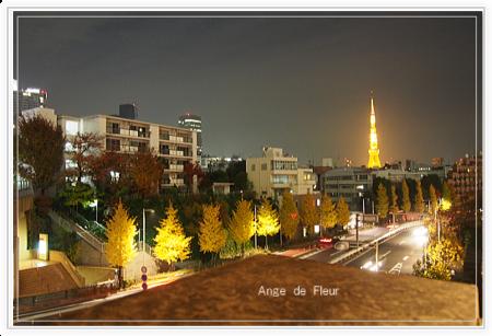 Image40_2